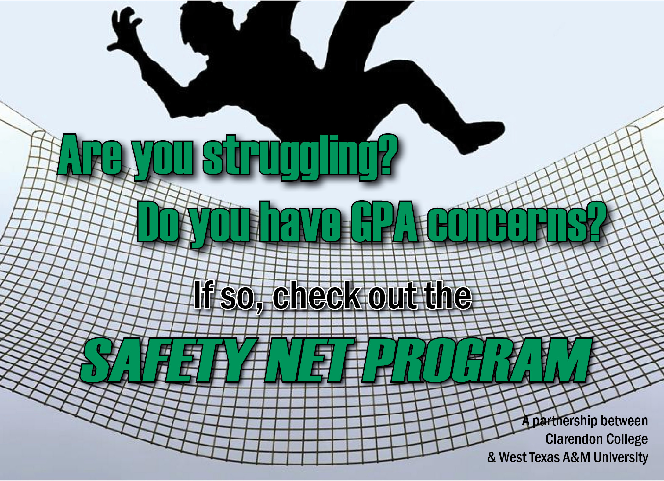 Safety Net Program